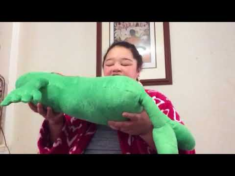 review of stuffed pickle by Fun and Function (I named him Vlasic)