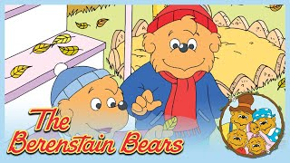 Berenstain Bears: Bears For All Seasons/ Grow It - Ep.39