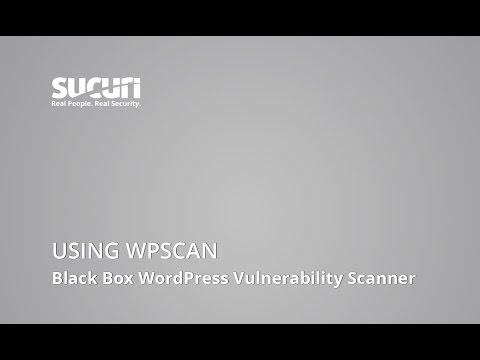 Using WPScan: Finding WordPress Vulnerabilities