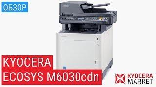 Обзор цветной МФУ Кyocera ECOSYS M 6030 cd | Купить цветной МФУ Киосера М 6030 |  Формат А4