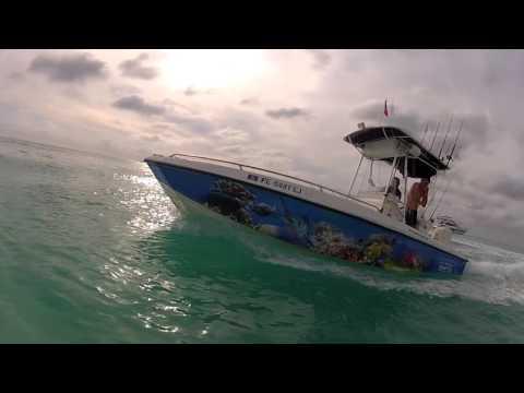 Bimini Bahamas Trip