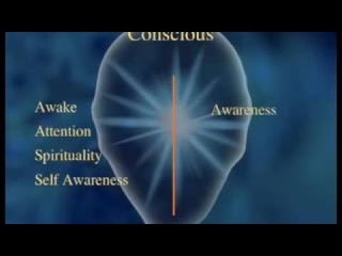 The Primacy of Consciousness (Documentary Science)