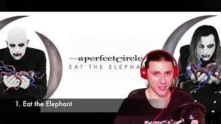 Baixar Eat the Elephant (A Perfect Circle) - Review/Reaction