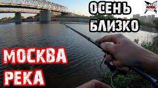 РЫБАЛКА В МОСКВЕ. ЛОВЛЯ ОКУНЯ НА СПИННИНГ. Москва-река в  конце августа