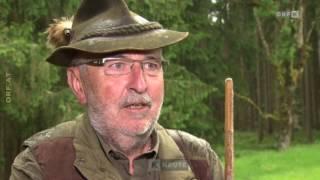 Jagd mit Schalldämpfern ORF Kärnten heute