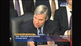 Gayle Trotter Lays Into Democratic Sen. Sheldon Whitehouse Over Women's Second Amendment Rights
