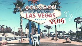 "VLOG#8 ""Fabulous Las Vegas, Nevada | TRAVEL GUIDE"""