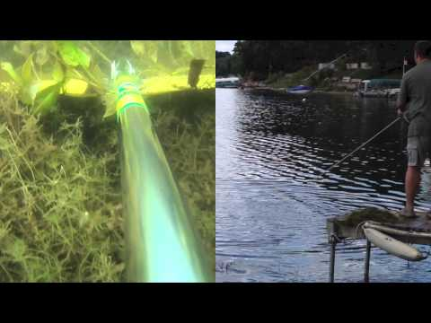 Amazing Aquatic Weed Removal With The Weedgator