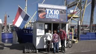 Mit dem Womo unterwegs - Texel, eine niederländische Insel
