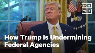 How Government Agencies are Failing Under Trump | NowThis