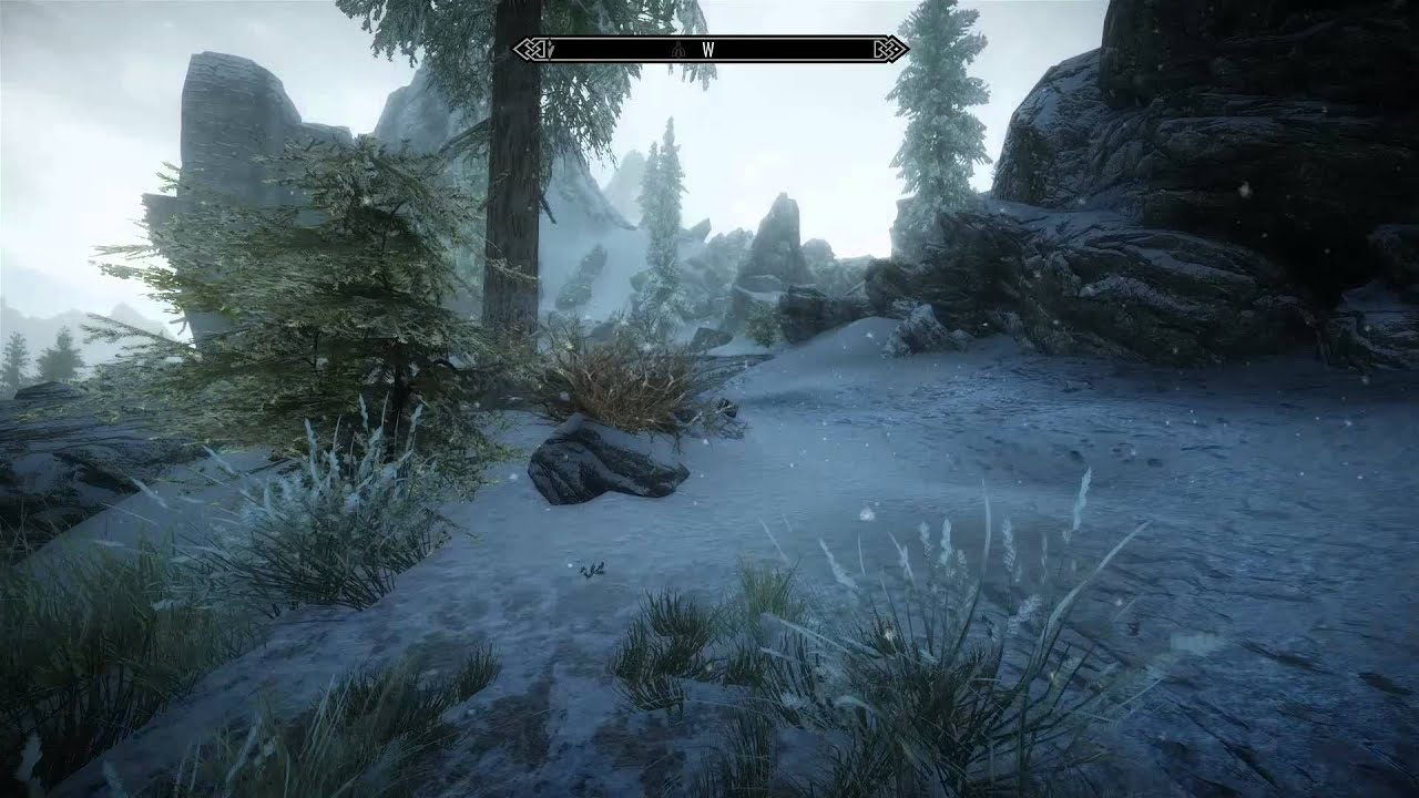Skyrim immersive first person