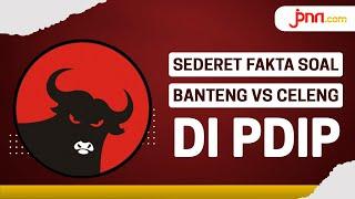 Fakta Banteng vs Celeng di PDIP