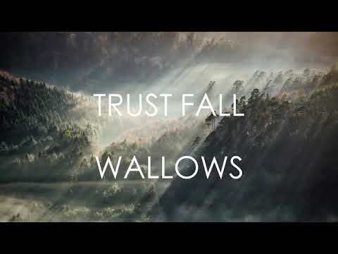 Trust Fall - Wallows (LYRICS)