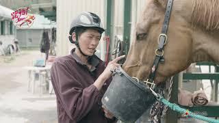 【4K】けーぶるにっぽん 躍動!JAPAN 人馬一体 パートナーと共に挑む
