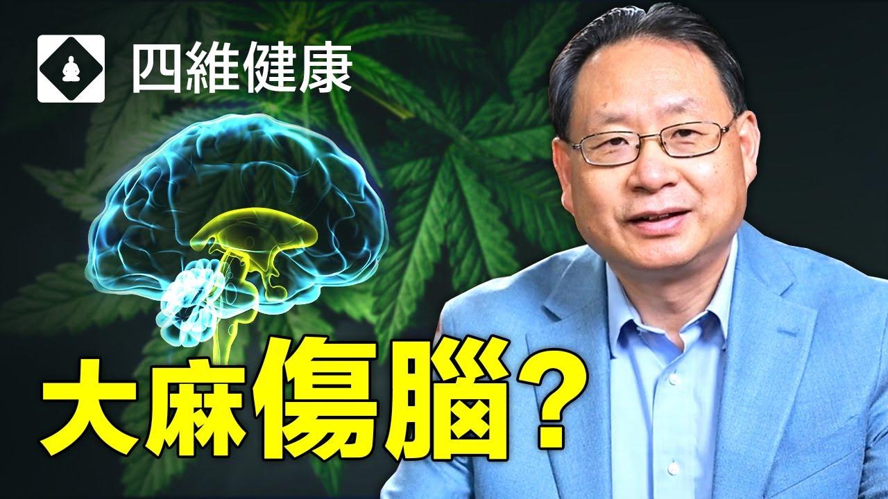 大麻成癮對大腦有什麼影響?青少年吸大麻危害巨大?藥物成癮可能因為原本就有疾病?楊醫生分析真實案例和大腦圖像,帶您直觀地了解大麻成癮之害。
