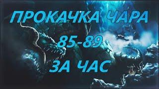 Lineage 2 Helios Airin Прокачка чара с 85-89 за час