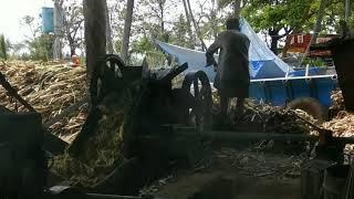 Traditional Jaggery( sugar) making process