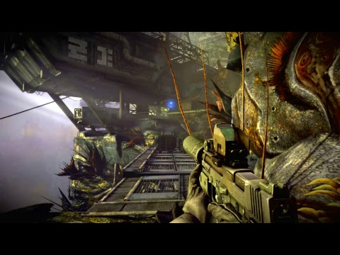 Killzone 2 Stream