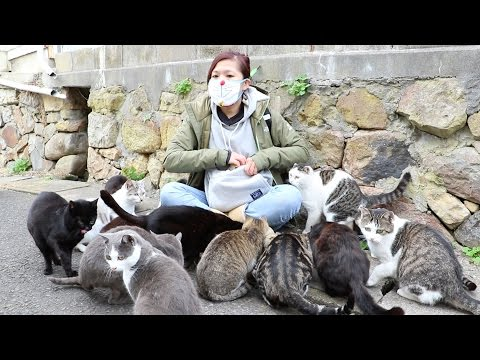 Thumbnail for Cat Video Girl Swarmed by Cats on Japan's Cat Island!