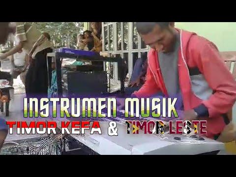 Instrumen Musik Timor