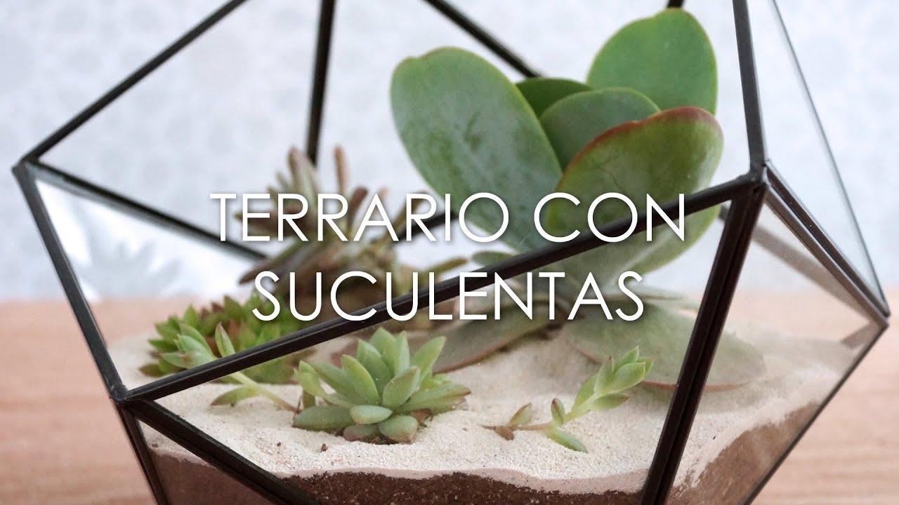 Diy c mo hacer un terrario de suculentas youtube for Como hacer un jardin pequeno