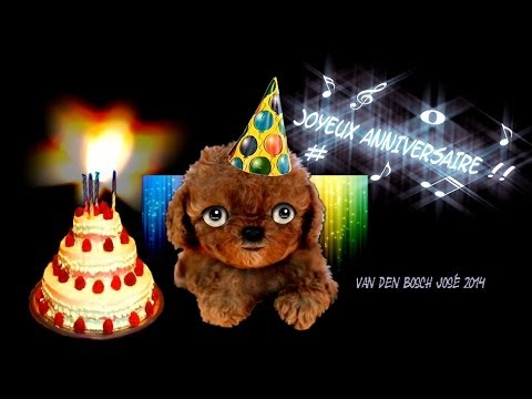 carte anniversaire chien qui chante
