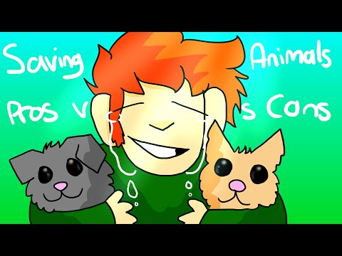 Pros And Cons Of Animal Testing + SESS Interviews!