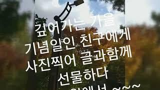 사진엽서 ~ 가을가을 ~ 깊어가는 가을 기념일을 맞은 …