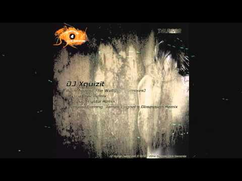 DJ Xquizit - Back Against The Wall (The Remixes)
