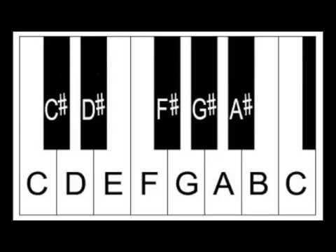Piano Lesson - The Sharp Sign, Sharp Notes and Half Steps