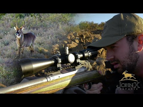500 Yard Waterbuck Shot with the .260 Rem | John X Part 2