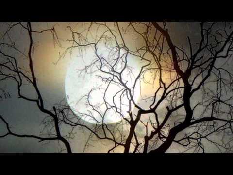 E.S Posthumus - Moonlight Sonata