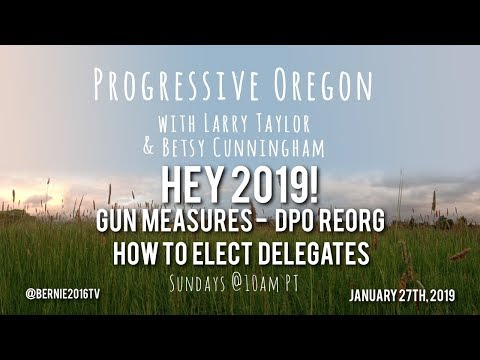 Hey 2019! - Gun Measures - DPO Reorg and How to Elect Delegates - Progressive Oregon