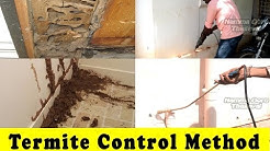 Termite Control Methods At Home | Termite Pest Control | How To Control Termite?
