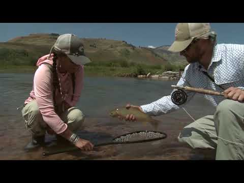 WorldCast Anglers: #flyfishing Wyoming