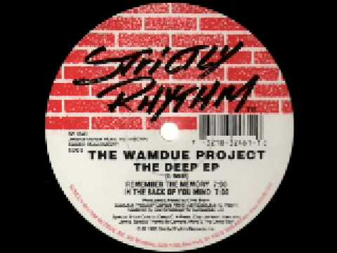 The Wamdue Project   Remember the Memory