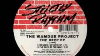 The Wamdue Project -  Remember the Memory