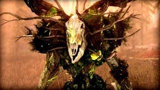 Skyrim - The Secret Power of Wood Elves You've NEVER Seen! - Elder Scrolls Lore