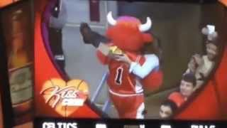 Benny The Bull Kiss Cam Steals Celtic