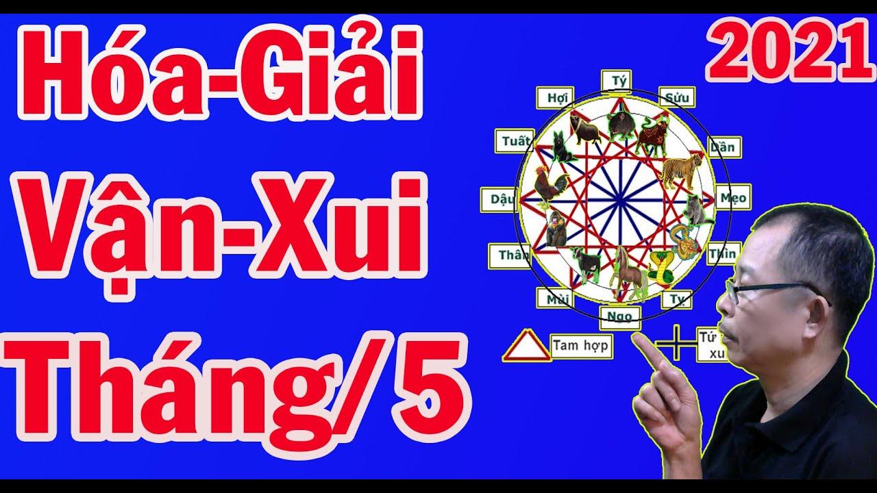 Vận  Hạn - Sui Xẻo -Nào Ngáng Chở 12 Con Giáp Trong Tháng 5 Năm 2021 Âm Lịch