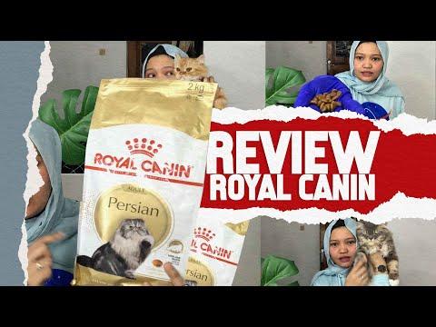 REVIEW JUJUR ROYAL CANIN PERSIAN ADULT