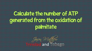 Calculate the number of ATP generated from oxidation of palmitate