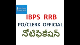 IBPS RRB OFFICIAL NOTIFICATION || CLERK/PO IN TELUGU
