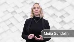 Vahvuudet ja heikkoudet //Meiju Sundelin// Digitaidot |