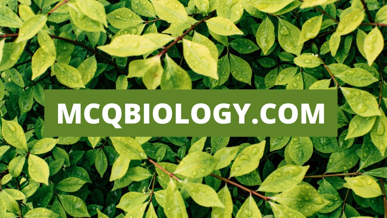 MCQ Biology: Biology Multiple Choice Questions and Answers