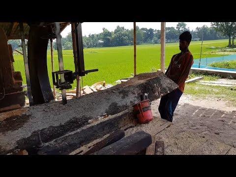 Wet Mahogany Wood Cutting Hardly at Sawmill।Tough To Cut Wet Wood on Saw Blade।Mahogany Wood Cutting