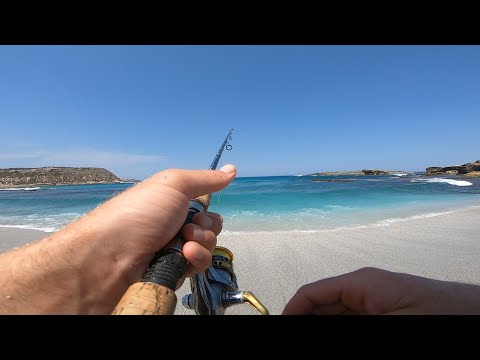 Catching Whiting Off The Beach
