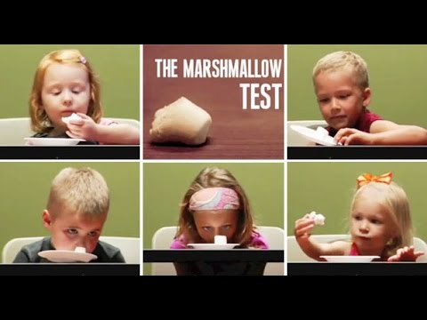 the marshmallow experiment | Instant gratification