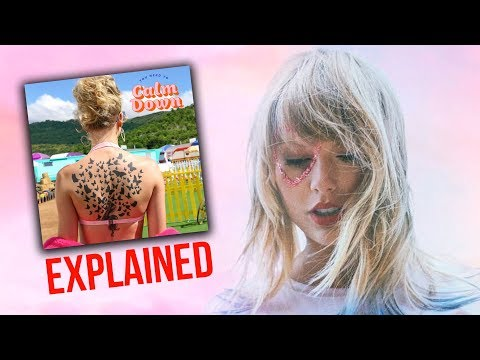 "Taylor Swift ""You Need to Calm Down"" EXPLAINED"