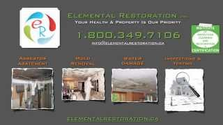 Mold Testing, Inspection and Removal Hamilton